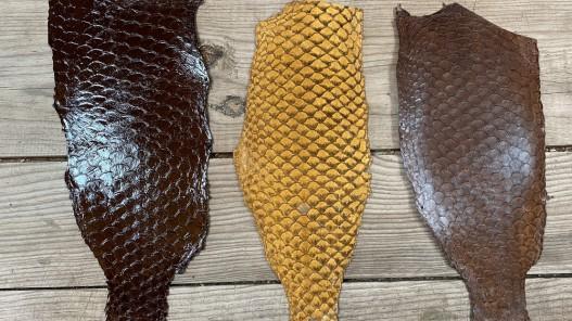 Lot peaux cuir de poisson tilapia - camaïeu de marron - soldes - bijou - accessoire - incrustation - cuir en stock