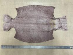 Envers peau de cuir de lézard marron mat - petite maroquinerie - bijou - accessoire - cuir en stock