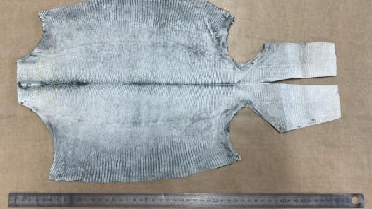 Envers peau de cuir de lézard gris mat - petite maroquinerie - bijou - accessoire - cuir en stock