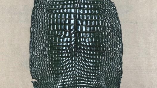 Peau de cuir de ventre de crocodile vert - maroquinerie - Cuir en Stock