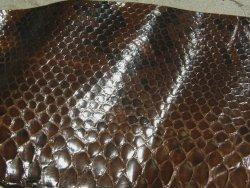 Chutes de cuir de serpent brun