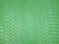 Serpent mat vert