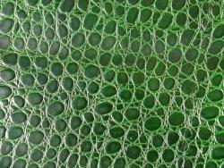 Morceau de vache grain croco vert