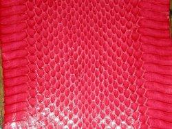 Serpent rouge
