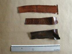 Morceaux de peau de serpent brun