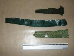 Morceaux de peau de serpent vert
