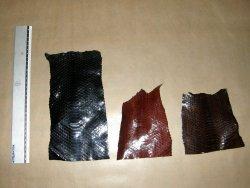 Morceaux de peau de serpent divers