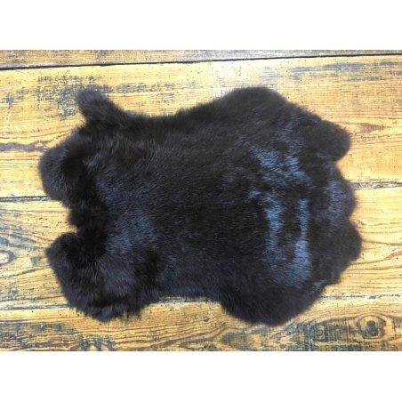 Lapin brun