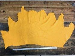 Morceau de cuir de veau jaune