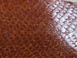 Morceau de peau de saumon fauve