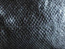 Grand morceau de peau de saumon noir
