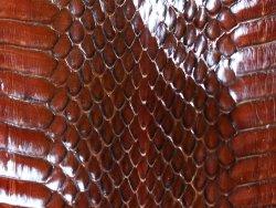 Peau de cuir de serpent marron