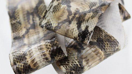 peau cuir de serpent façon python naturel doré métallisé or