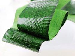 Peau de cuir de serpent - Vert