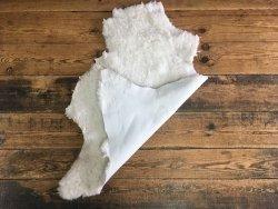 Peau en laine blanc cuir en stock