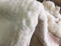 peau de mouton lainé couleur beige cuirenstock