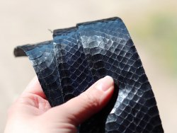 cuir de serpent bleu marine morceaux de peau Cuir en Stock