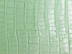 cuir de vache fantaisie grain crocodile mint cuirenstock vert celadon