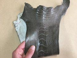 morceau de cuir de patte d'autruche gris brillant accessoire maroquinerie luxe exotique cuir en stock