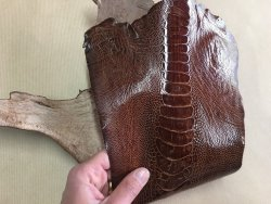 morceau peau de patte d'autruche marron gold brillant maroquinerie accessoire luxe exotique Cuir en Stock