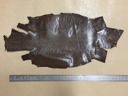 peau de cuir de lézard noisette accessoire bijoux cuirenstock