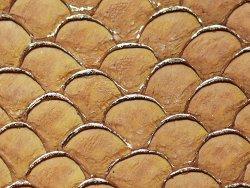 petite peau de tilapia marron et doré fauve cuirenstock