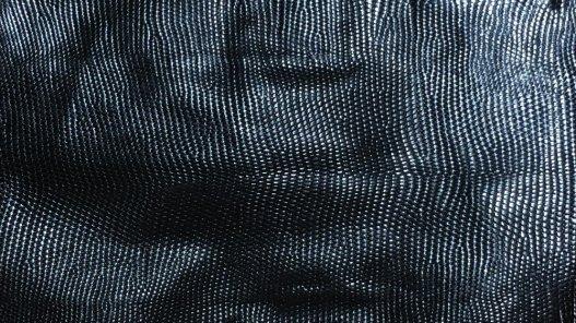 petite peau de cuir de lézard noir Cuirenstock