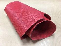 peau de cuir de requin rouge Cuirenstock