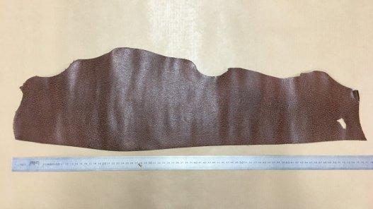 peau de cuir de requin brun cuirenstock