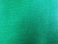 peau de cuir de requin vert cuir en stock