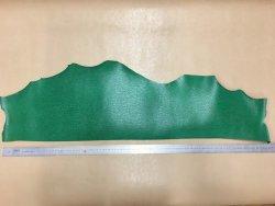peau de cuir de requin vert cuirenstock