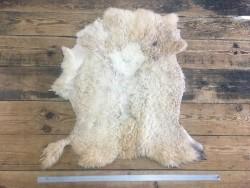Peau de mouton lainé beige choix écart Cuirenstock