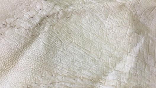 Morceau de cuir d'autruche véritable beige Cuir en stock