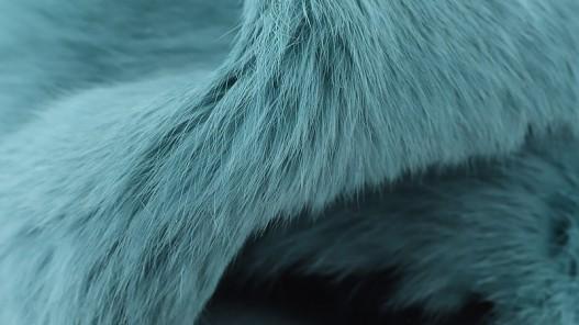 Peau lapin poil vert d'eau Cuir en Stock