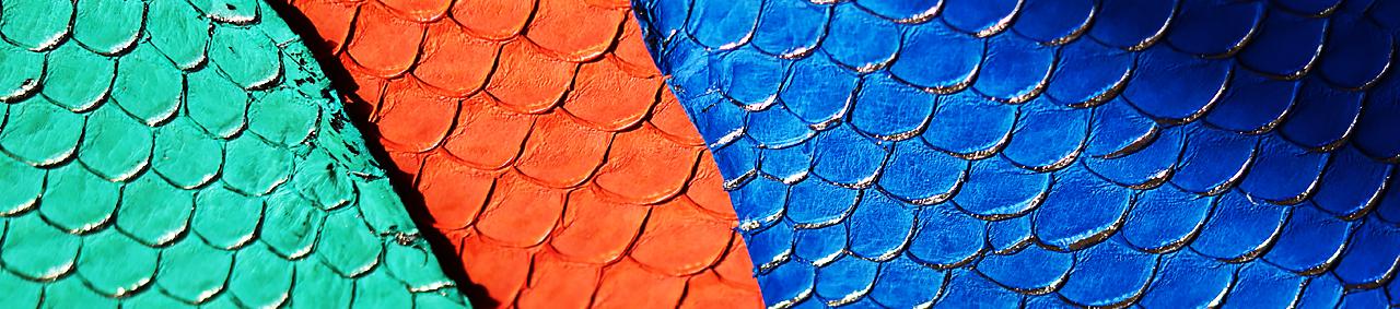 peau de cuir de poisson cuirenstock